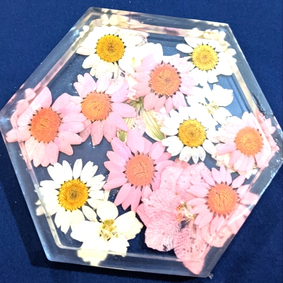 Pink and White Pressed Flower Coaster
